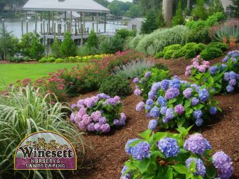 landscape design virginia beach va
