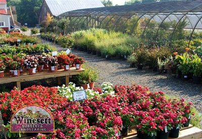 garden center virginia beach