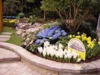award-winning-landscape-design-virginia-beach-5