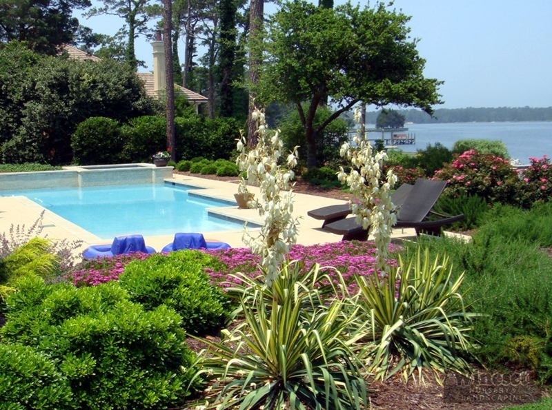 Landscaping virginia beach outdoor goods for Pool design virginia