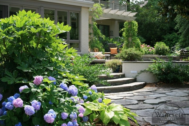 Contemporary Landscaping Virginia Beach 5