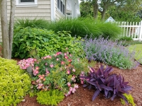 Virginia-Beach-landscaping-4