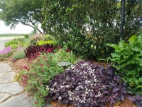 Virginia-Beach-landscaping-6