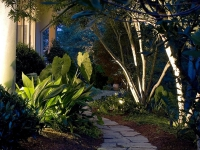 outdoor-lighting-virginia-beach-26
