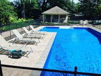 Virginia-Beach-pool-landscaping-3