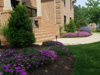 Virginia-Beach-landscaping-1