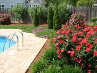 traditional-landscaping-virginia-beach-15