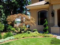 traditional-landscaping-virginia-beach-30