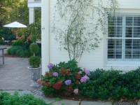traditional-landscaping-virginia-beach-8
