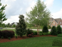 landscaping-virginia-beach-5