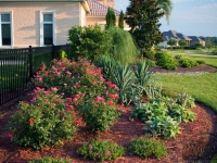 tropical-landscape-design-virginia-beach-1