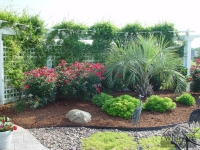tropical-landscape-design-virginia-beach-11
