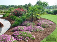 tropical-landscape-design-virginia-beach-14