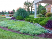 tropical-landscape-design-virginia-beach-2