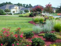 tropical-landscape-design-virginia-beach-3