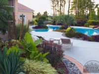 tropical-landscape-design-virginia-beach-4