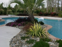 tropical-landscape-design-virginia-beach-6