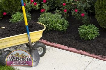 flower bed maintenance virginia beach