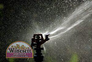lawn irrigation tips chesapeake