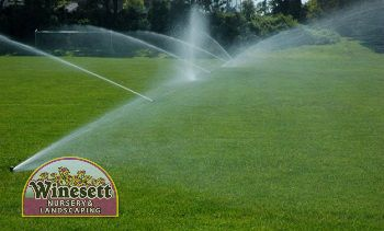 calibrate lawn irrigation system tips virginia beach