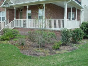 landscaping costs before installation virginia beach
