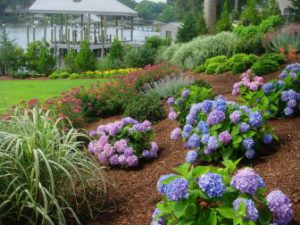 larger landscaping costs after installation virginia beach