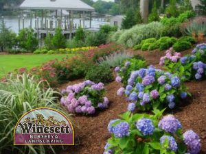 Quality Landscaping Services in the Virginia Beach Area